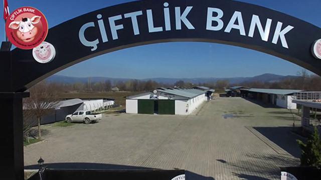 Dosyası ayrılan 28 Çiftlik Bank sanığı için karar verildi