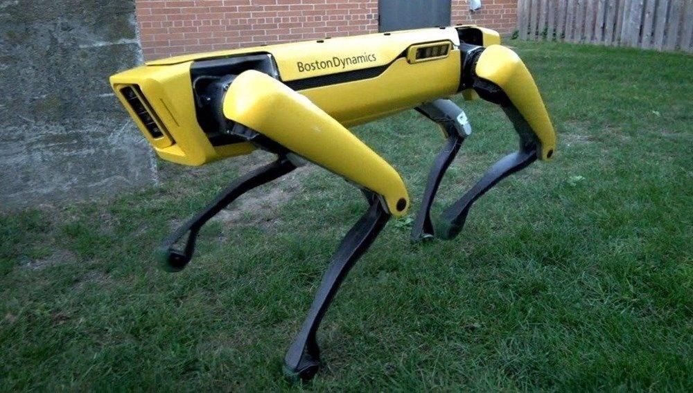 Robot köpek üreten şirketin yeni projesi belli oldu