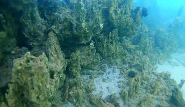 Van Gölü'nün derinliklerindeki binlerce yıllık tarih yatıyor