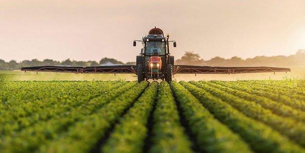 Bakan Pakdemirli: 115 bin tohum koruma altında