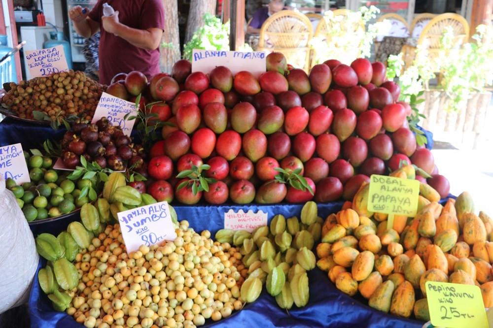 Antalya'da yetişen tropikal meyvelerin fiyatı dudak uçuklatıyor