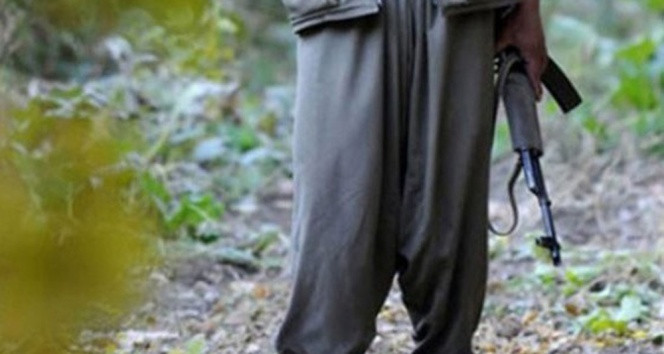 ABD'den PKK ve YPG itirafı