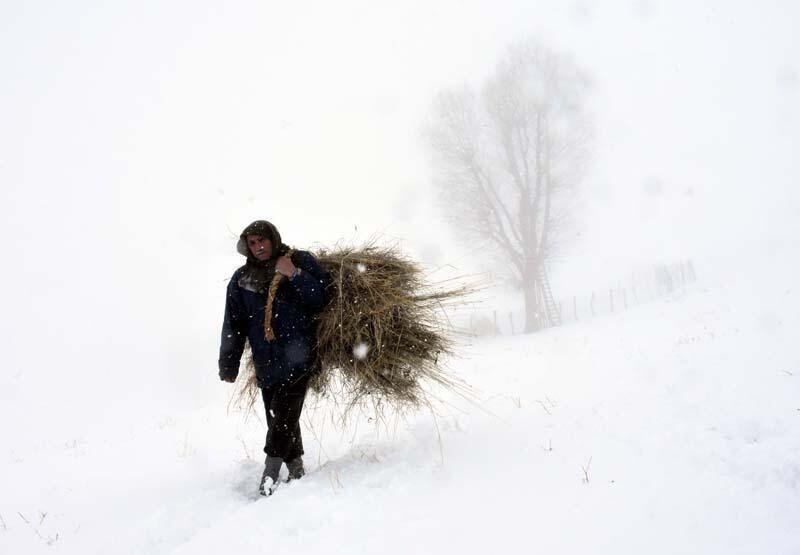 Doğu Anadolu Bölgesi'nde kar yağışı etkili oldu - Resim: 1