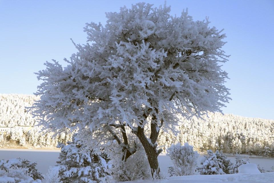 İşte Türkiye'nin en soğuk ili: Sıcaklık eksi 32'ye düştü - Resim: 3