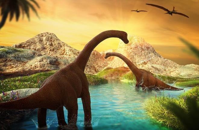 Tam 98 milyon yıllık dünyanın en büyük fosili bulundu - Resim: 1