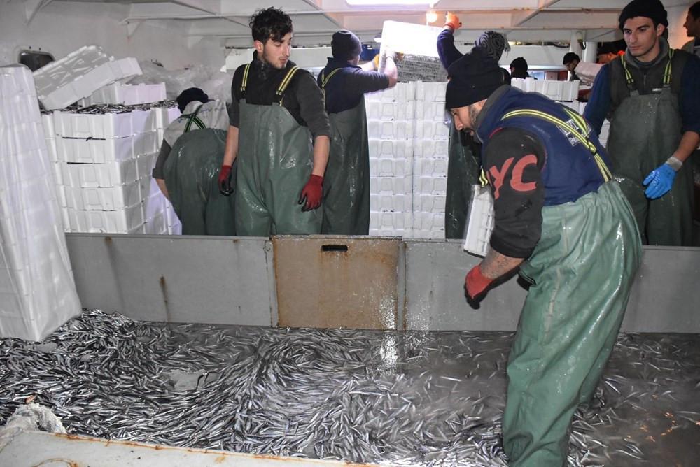 Balıkçılar hamsi avının serbest olduğu İğneada'ya akın etti, hamsi fiyatları düştü - Resim: 4
