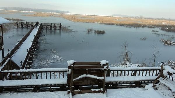''Kuş cenneti'' Efteni Gölü, buz cenneti oldu - Resim: 2