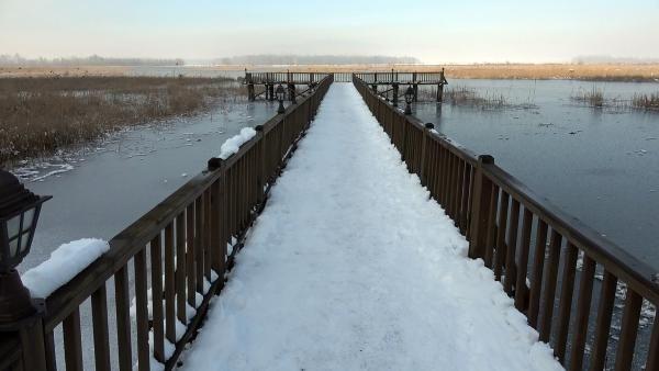 ''Kuş cenneti'' Efteni Gölü, buz cenneti oldu - Resim: 3