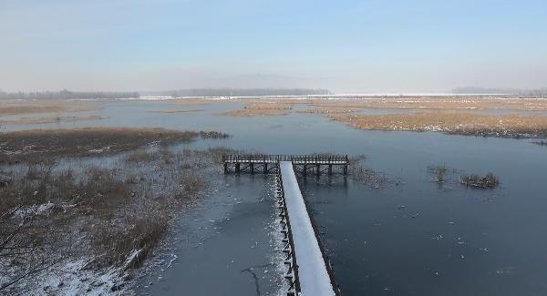 ''Kuş cenneti'' Efteni Gölü, buz cenneti oldu - Resim: 4