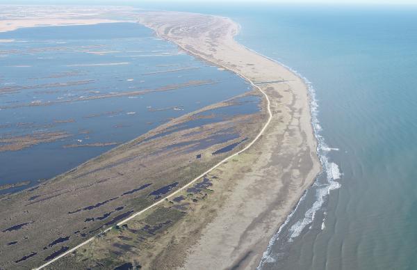 Karadeniz'de kırmızı alarm! ''Geri dönüşsüz bir noktaya gidebiliriz'' - Resim: 1