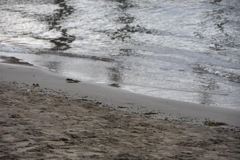 Deniz çekilmesi deprem habercisi mi ? - Resim: 4
