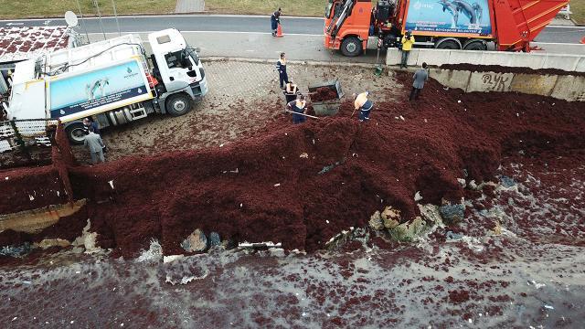 İstanbul'da Caddebostan Sahili kırmızıya büründü