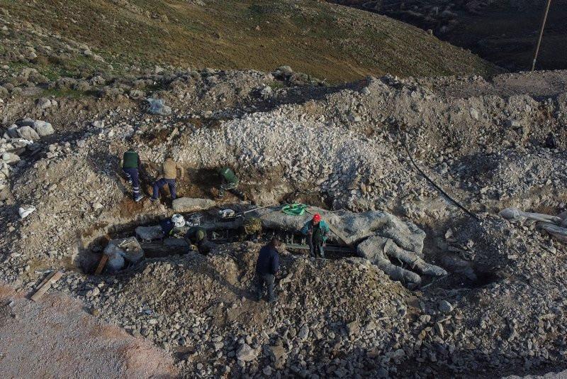 Yunanistan'da 20 milyon yıllık keşif