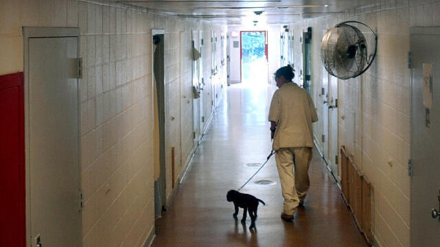 ABD'de kadın hapishanesinde şiddet ve cinsel taciz skandalı