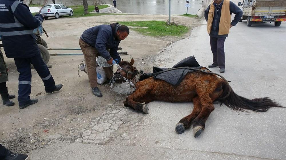 Aşırı yükten yere yığılan ata işkence ettiler!