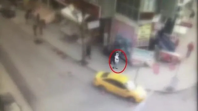 Sultangazi'de maganda dehşeti: 6 gözaltı
