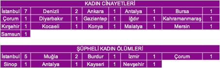 Ocak ayında Türkiye'de öldürülen kadın sayısı şoke etti - Resim: 2