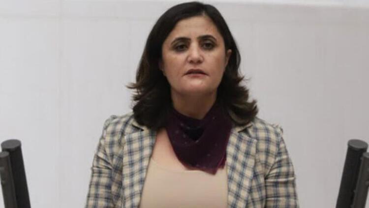 Gara'ya giden HDP'li milletvekiline soruşturma