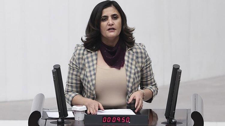 İşte HDP'li vekili Gara'da gördüğünü söyleyen teröristin ifadesi