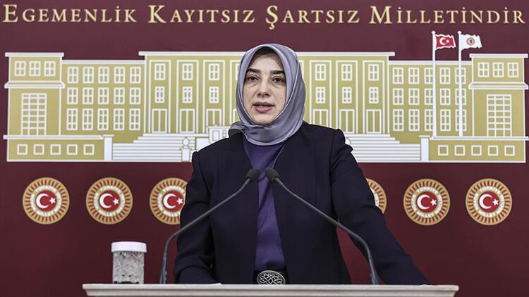 AK Partili Zengin'e hakarete disiplin soruşturması