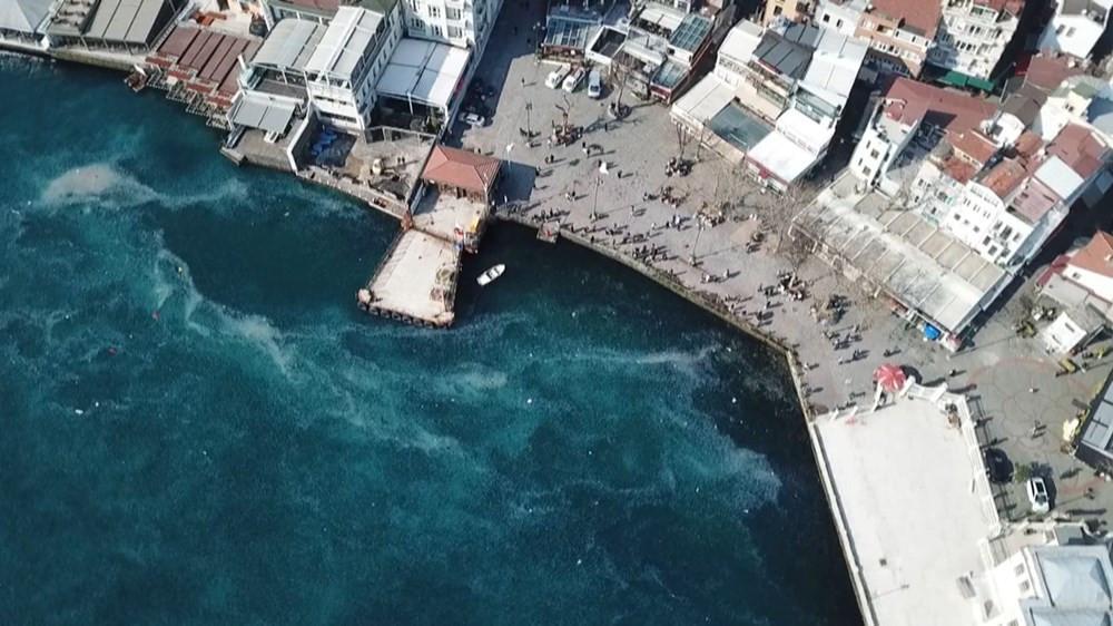 İstanbul Boğazı'nda denizanası istilası - Resim: 3