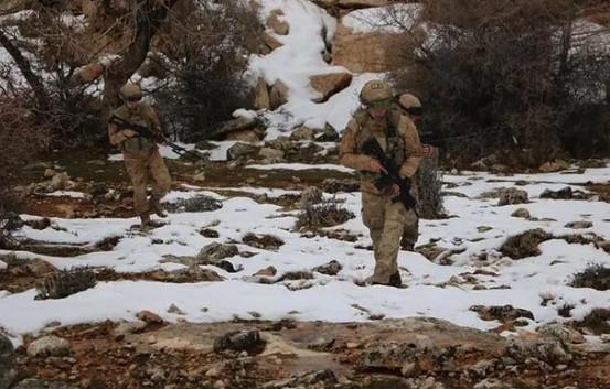 Bitlis ve Siirt'te Eren-11 Sehi Ormanları Operasyonu başlatıldı