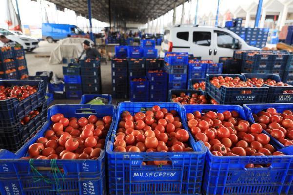 Antalya'dan dünyaya meyve ve sebze ihracatı