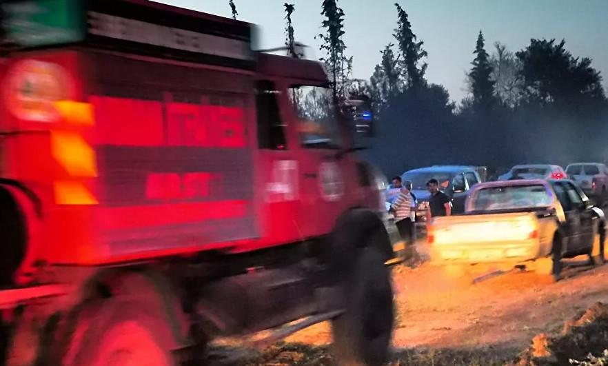 Sadece 1 yılda Türkiye'de 30 bin futbol sahası boyutunda ormanı kül oldu