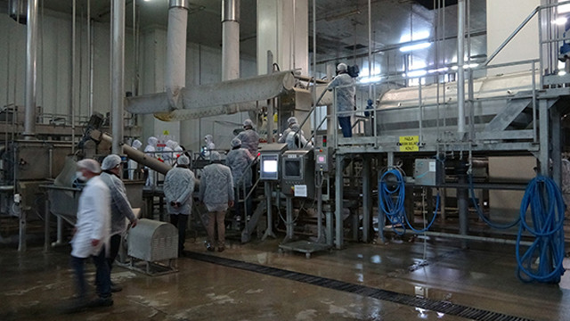 Türkiye'nin ilk ve tek nişasta tesisi üretimi sürdürüyor