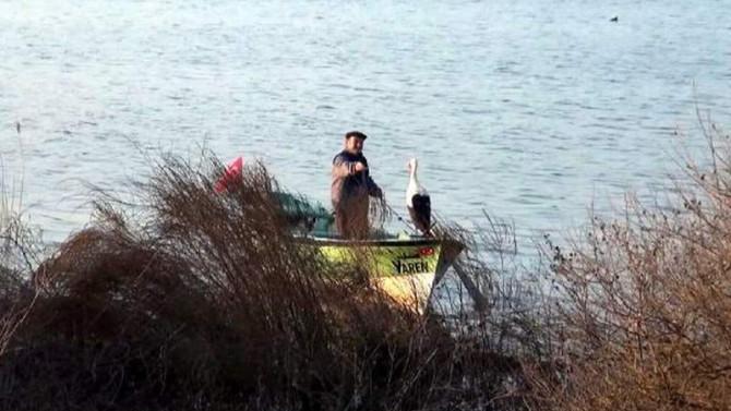 Tam bin 696 km uçup dönüp o balıkçıyı buldu!