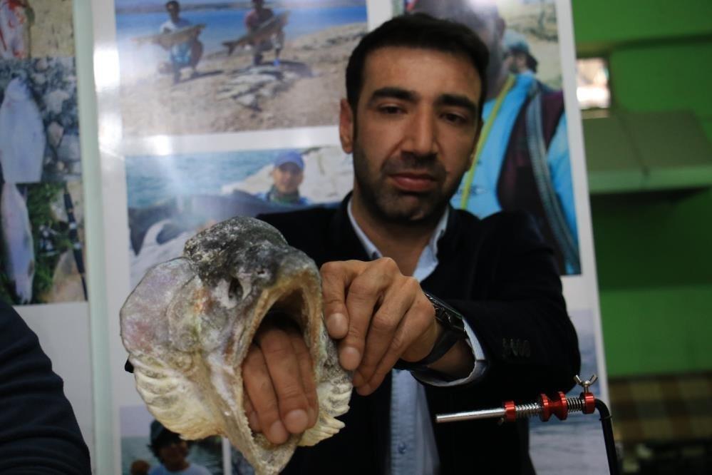 Avrupa'nın en büyüğü Elazığ'da yakalandı