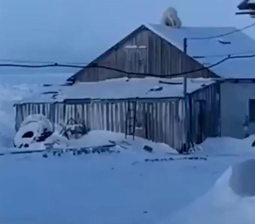 Şaşkına çeviren görüntü: Çatıda ayı var!