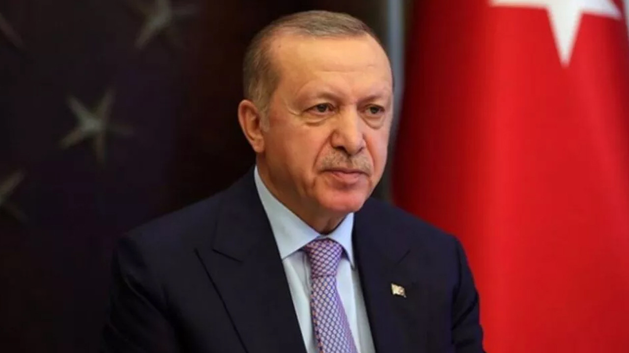 Nagehan Alçı: Erdoğan İstanbul Sözleşmesi'ne imzayı isteyerek atmadı