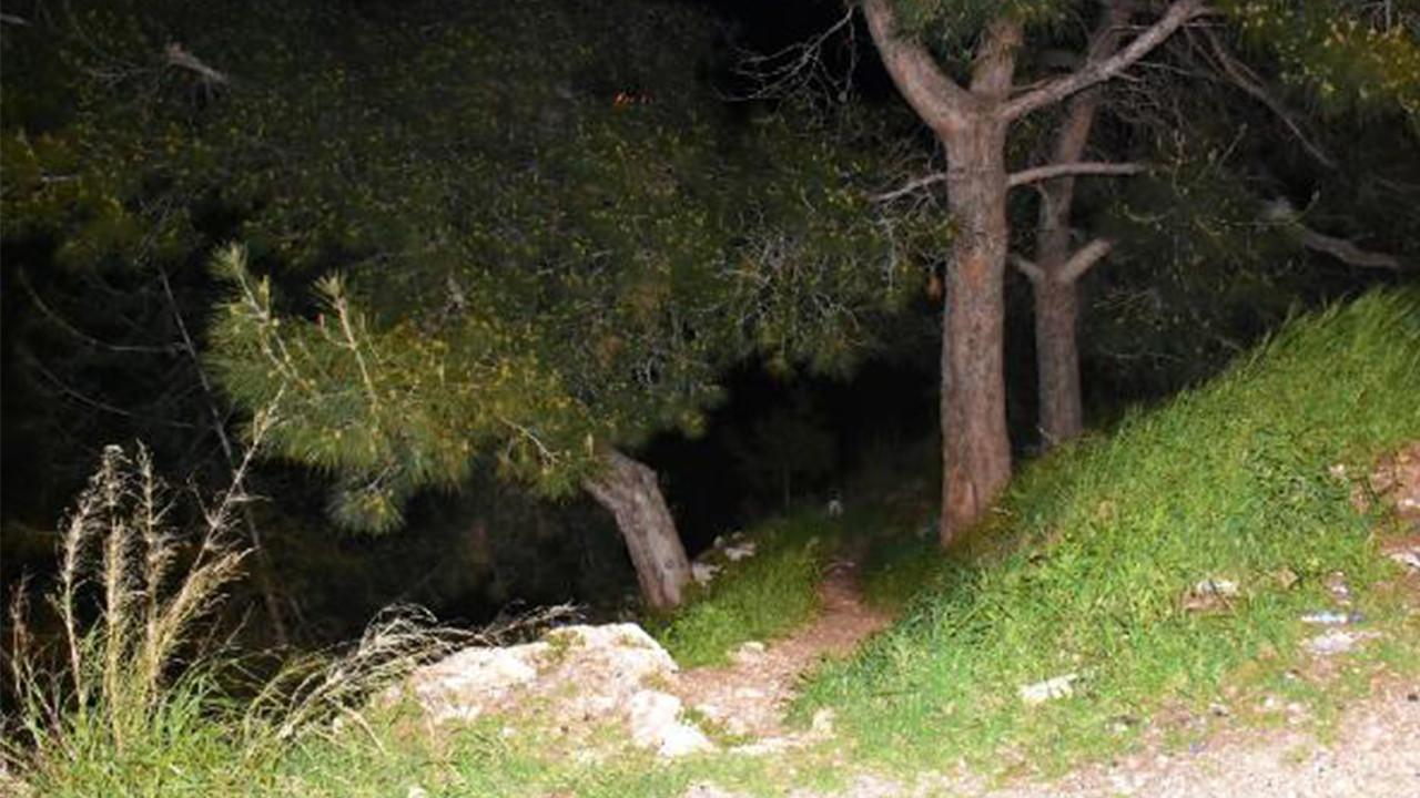 İzmir'de vahşet! Ormanlık alanda bulundu