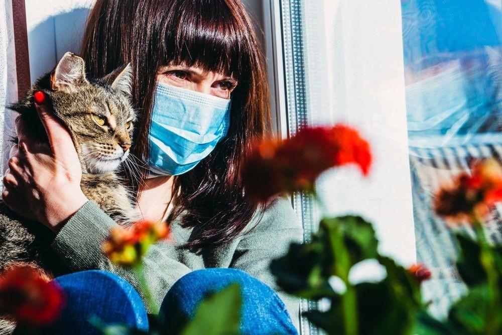 Pandemiye neden olma ihtimali en yüksek 10 hayvan açıklandı - Resim: 1