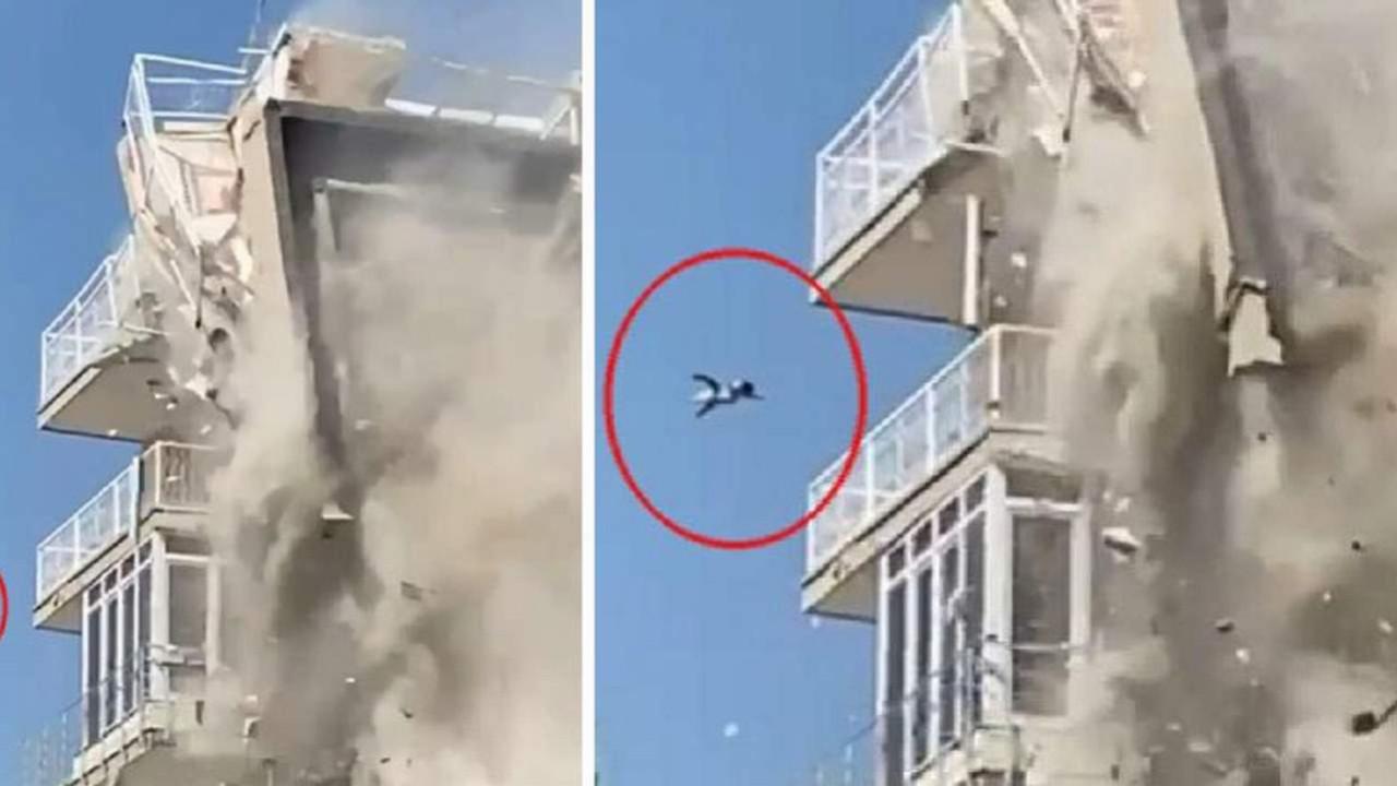 Uçtu uçtu kedi uçtu! İzmir'de korkutan görüntüler