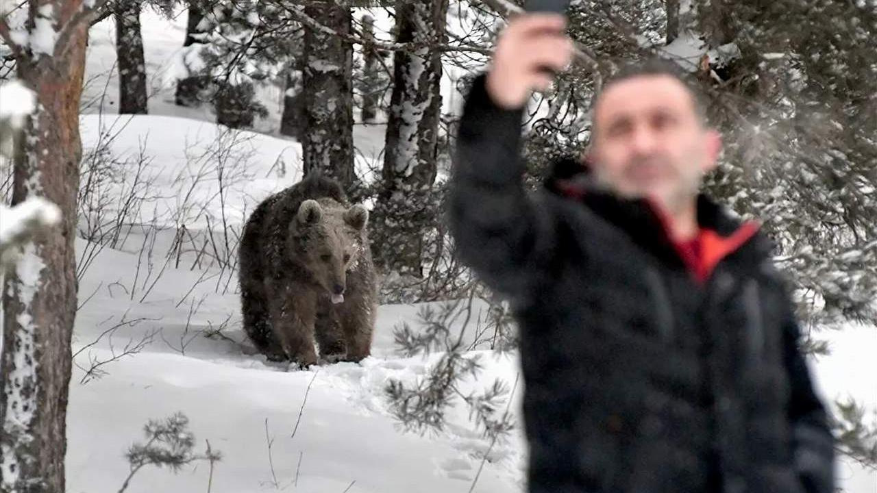 Kış uykusu sonrası ''ölümüne'' selfie!