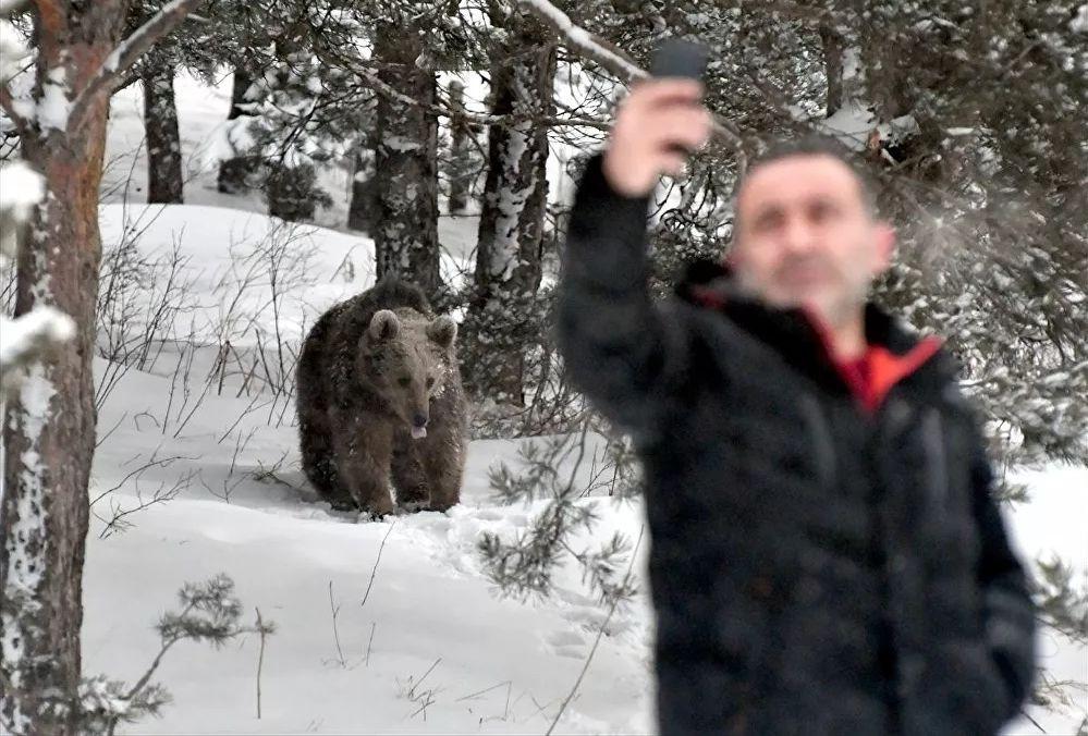 Kış uykusu sonrası ''ölümüne'' selfie! - Resim: 1