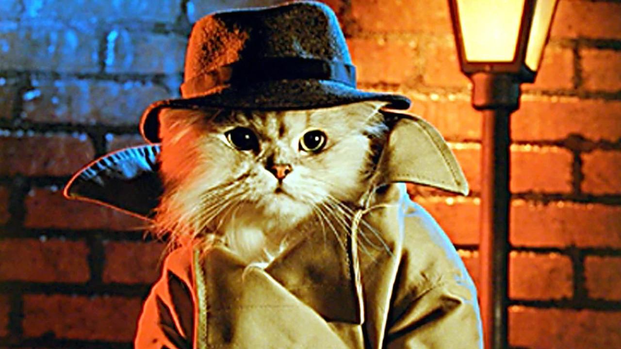 CIA'in ''casus kedi'' projesi yıllar sonra ortaya çıktı