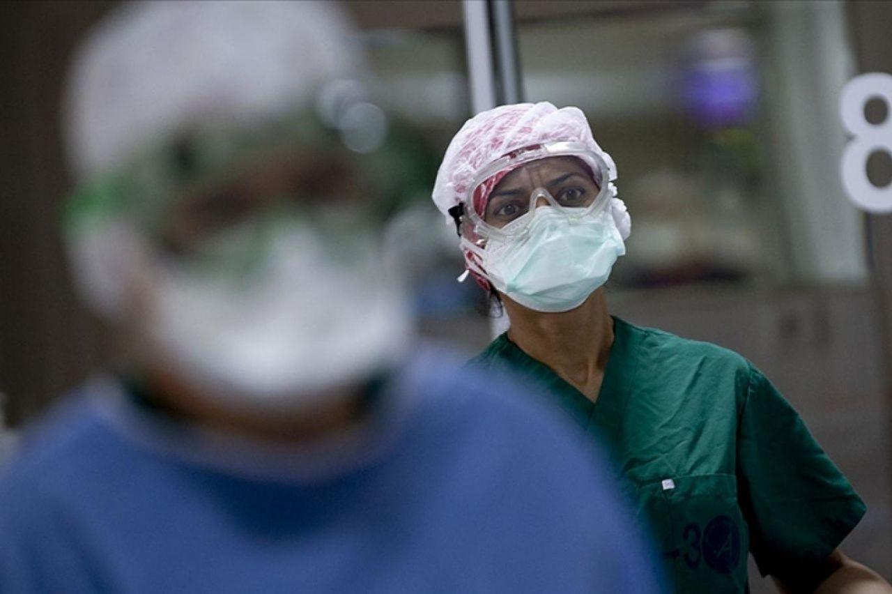 Prof. Dr. Cinel: ''Mutant virüs ana virüs oldu'' - Resim: 2