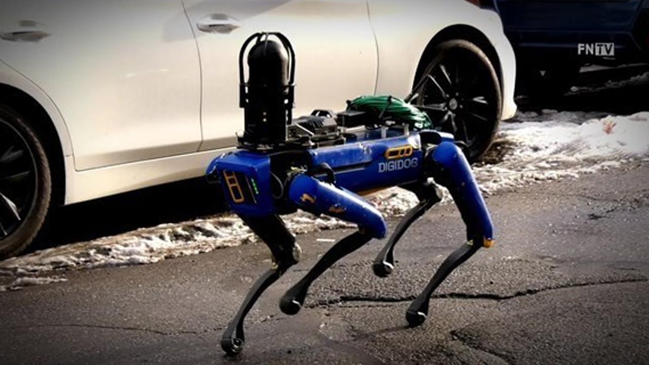 Robot köpek sahaya indi! Sosyal medya bu görüntüleri konuşuyor