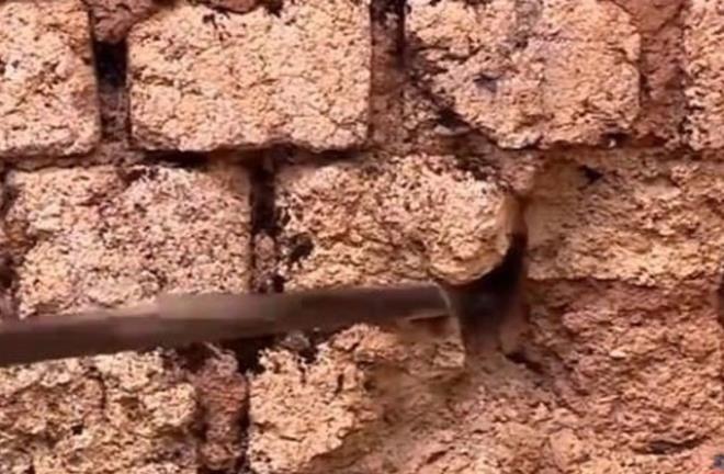 Duvardan gelen sesleri kontrol etmek istedi, hayatının şokunu yaşadı - Resim: 2