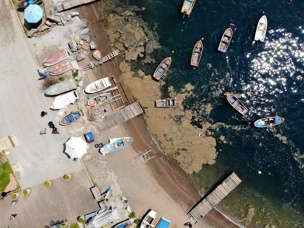 Deniz yüzeyini kaplayan tabaka balıkçıları üzdü - Resim: 1