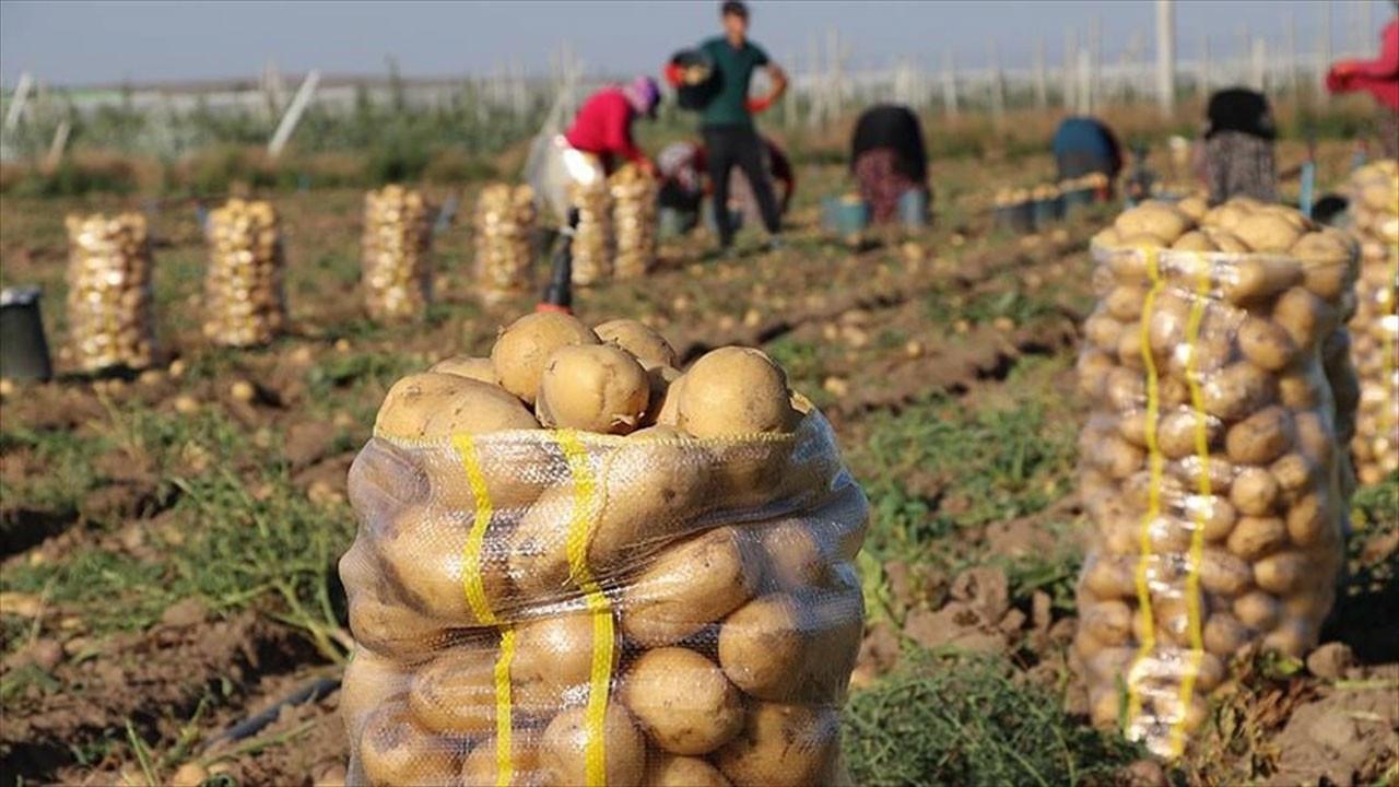 Fırsatçıların yeni oyunu patates ve soğanda oldu