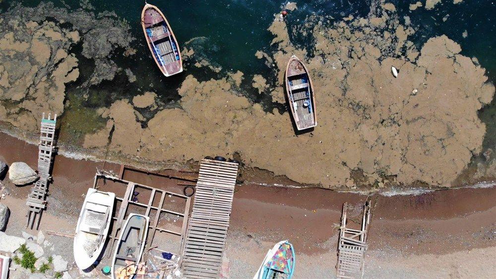 Deniz yüzeyini kaplayan tabaka balıkçıları üzdü - Resim: 3