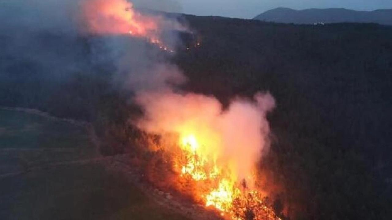 Muğla'daki orman yangınında sabotaj kokusu!