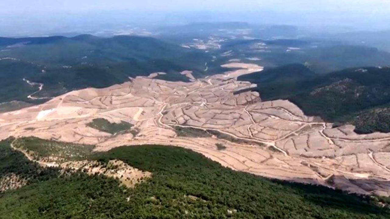 Kaz Dağları'nı talan eden şirketten Türkiye'ye 1 milyar dolarlık dava