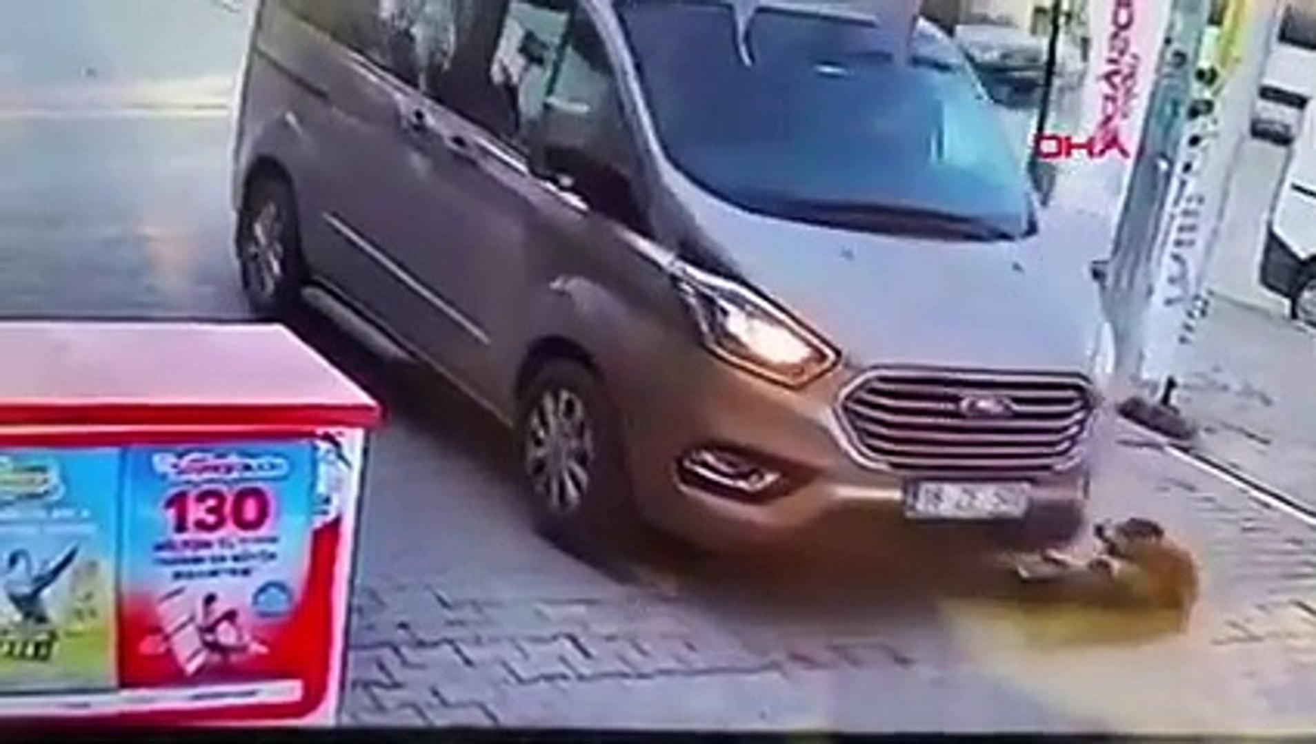 Tam anlamıyla vicdansızlık! Aracıyla köpeği ezip kaçtı