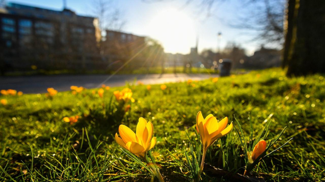 Sokağa çıkma yasağı uygulanacak bayramda hava nasıl olacak ?