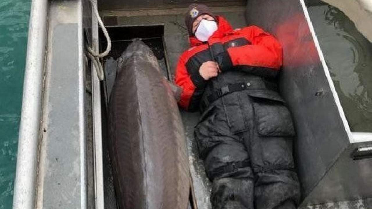 100 yaşında 109 kilo ağırlığında balık yakaladı